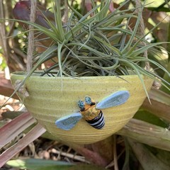 Native Blue Banded Bee Hanging Planter Bowl