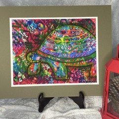 Turtle Limited Edition Print - 8/25