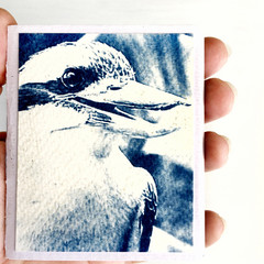 Mini Zine, Artist Book of original cyanotypes OOAK