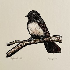 Australian Birds - Willy Wagtail Edition of 25- Linoprint and Watercolour