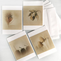 Botanical Greeting Card Set of Four