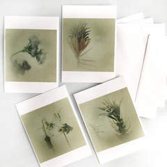 Botanical Greeting Cards, Pack of Four.