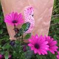 Ecofriendly Galah Beeswax Bag