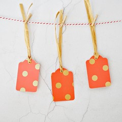 Orange Dot Gold Tags {5w raffia ties} | Modern Dot Tags | Modern Christmas Tags
