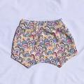 Shorts/bummies - rainbow