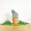 Light Green Crochet Cactus with Purple Flowers in Terracotta Pot