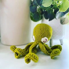 Limelight wool octopus