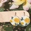 Yellow English Roses Collection - Circle