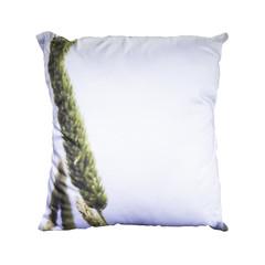 Blue Grass Cushion