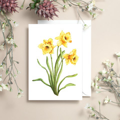 Daffodils Watercolour Artist Greeting Card, Blank Inside, A6 size, Floral