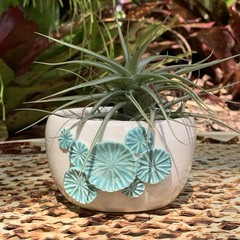 Turquoise Flower Planter