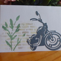 MALE BLANK CARD  (FREE POSTAGE)