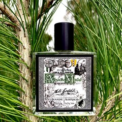 ABSINTHE_MINDED - 50ml - EdP