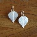 Recycled Silver Leaf Earrings