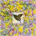 Sensory Rice - mixed colours