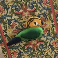 Budgie bird animal brooch