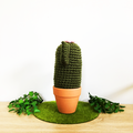 Dark Green Crochet Cactus with Pink Flowers