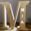 Personalised LED Alphabet Letter