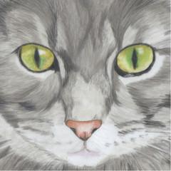 Cat Portrait Card: MISSY