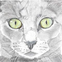 Cat Portrait Card: LYDIA