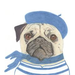 Whimsical Animal Card: Jean-Paul Pug