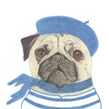 Whimsical Animal Card: Jean-Paul Pug
