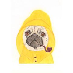 Whimsical Animal Card: Cap'n Pug
