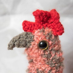 Hand-knitted Funky Chook/Chicken Tea Cosy (Isa Brown/Red) - Mothers Day gift!