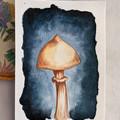 Set 6 Watercolour Mushroom Postcards