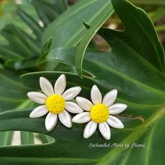 Daisy Flower stud earrings