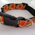 Black and yellow sunflower print adjustable dog collar