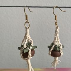 Plant succulent crazy plant lady drop dangle earrings cute
