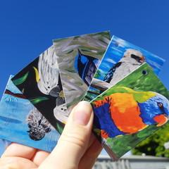 Australian Birds Gift Tag Pack