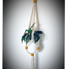Medium hanger (coloured knot)