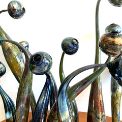 Sea blooms: handblown glass sculpture