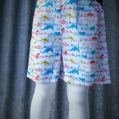 "Kids Novelty Shorts- ""Dinosaurs"""
