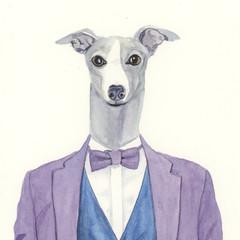 Italian Greyhound Greeting Card