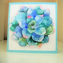 Handmade Greeting Card Succulent Card Pastel Boho Style Flower Card
