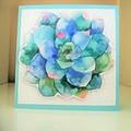 Handmade Greeting Card Succulent Card Pastel Boho Style Flower Card