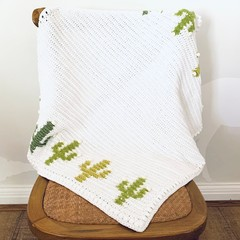 Hand made Baby Blanket with cactus motif
