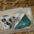 gemstone soap x2 / white and blue green