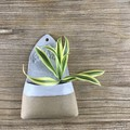 Ceramic Wall Planter /Plant Holder/ Succulent Pot/ Gift