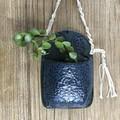Ceramic Wall Planter /Plant Holder/ Succulent Pot/ Gift