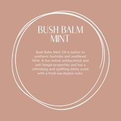 Lip Balm | Bush Balm Mint.