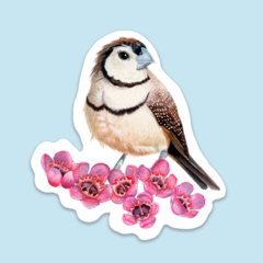 SHAPED ART STICKER   Double-Barred / Owl Finch