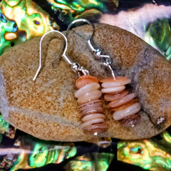 Natural Seashell Earrings
