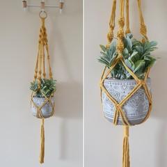 Hand made macrame plant hanger/holder - mustard