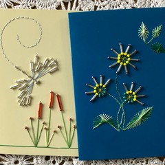 Dragonflies and flowers