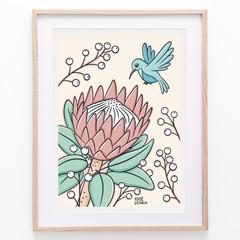 Protea & Sunbird Print