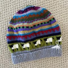 Men's  Sheep Beanie  -hand knitted